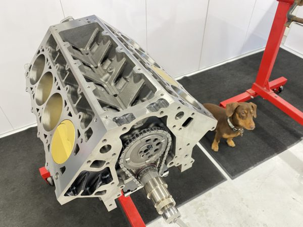 Dart LS Next engine and Benny the shop dachshund